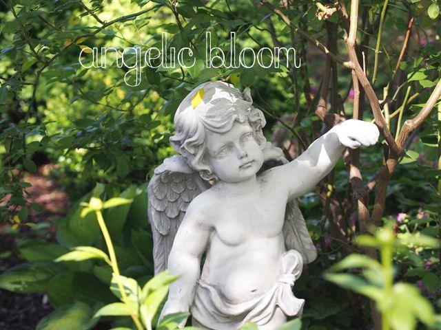 天使のいる庭